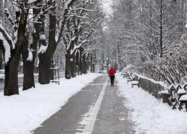 Do godz. 18 ponad 600 interwencji związanych z silnym wiatrem i opadami śniegu