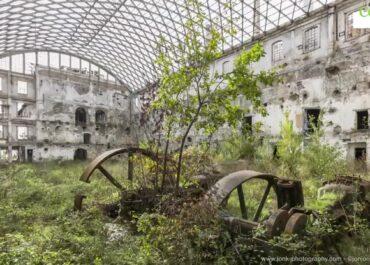 Opuszczone miejsca, które przejęła natura.