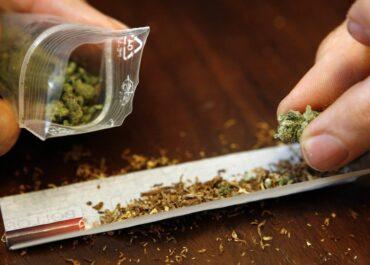 Marihuana jednak może mieć związek z twardymi narkotykami.