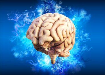 Dziś Światowy Dzień Mózgu. Jak wpływają na niego ćwiczenia fizyczne?