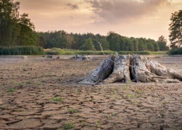 W 2060 roku liczba ludności przekroczy 10 miliardów. Coraz większym zagrożeniem jest brak dostępu do wody i żywności
