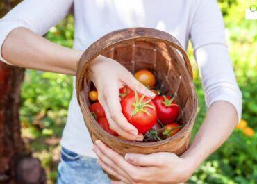 Dziś Światowy Dzień Zdrowia Psychicznego. Praca w ogrodzie poprawia nastrój!